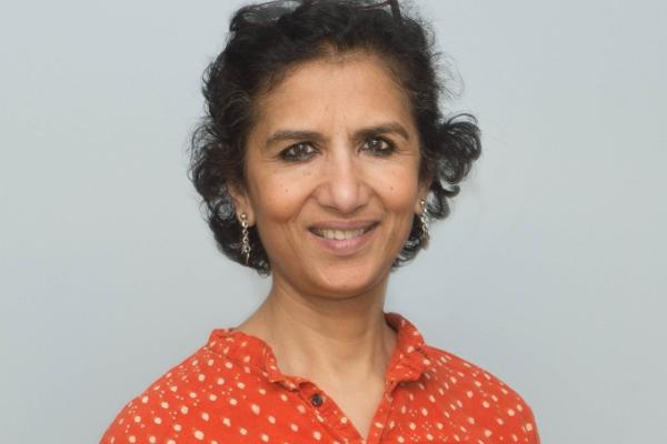 Chandralekha Singh (University of Pittsburgh) 11/8/18 Physics Education Research seminar speaker