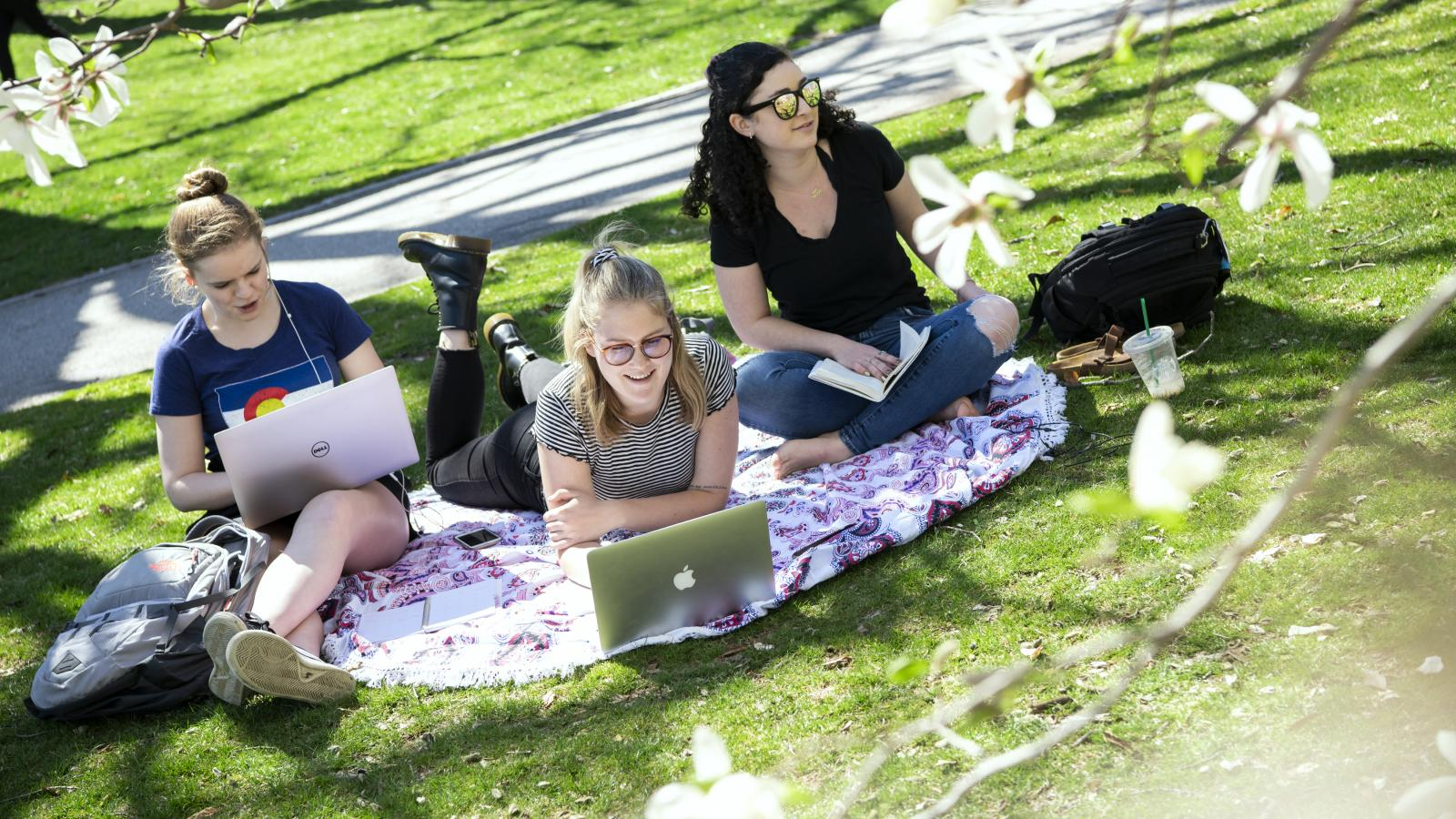 students sitting on the grass on the green space called the oval